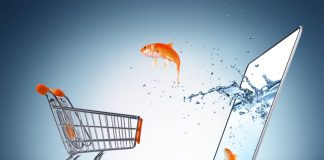 goldfish in cart – e-commerce concept