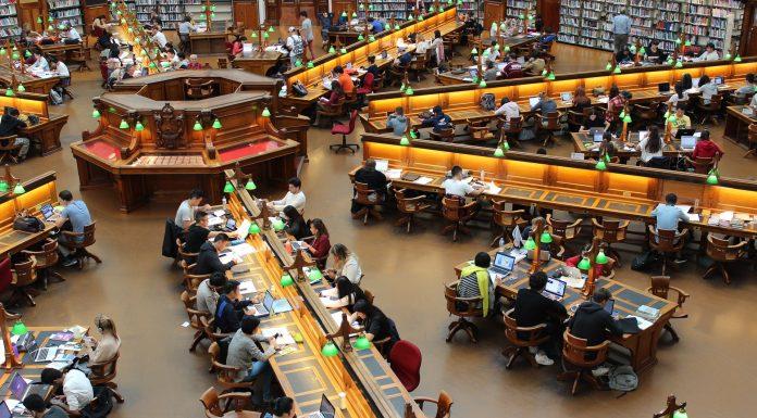 biblioteka studia