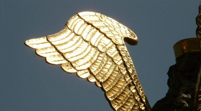 anioł biznesu