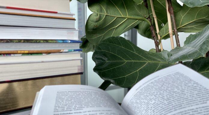 42 proc. Polaków w ostatnim roku przeczytało przynajmniej jedną książkę.
