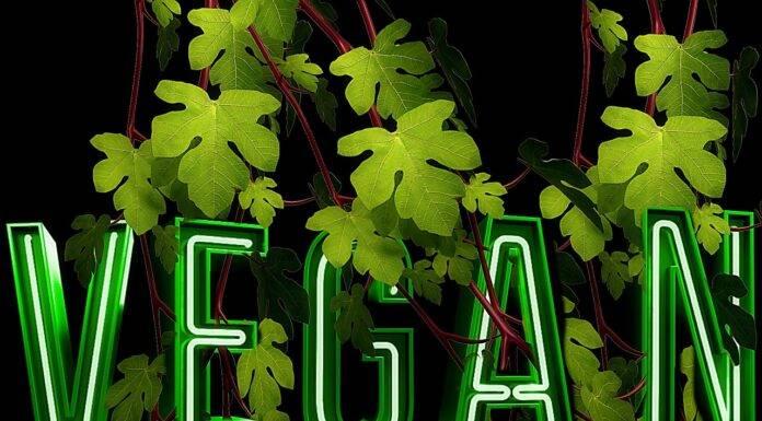 wegańskie bio eko jedzenie